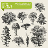 Tree sketches — Vector de stock