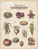 Vintage placard with vegetables — Vector de stock
