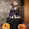 Two little witches — Stockfoto #12640459