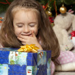 Royalty-Free Stock Photo: The girl with a gift under the Christmas tree