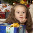 Stock Photo: Girl with gift under Christmas tree