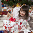 The girl with a gift under the Christmas tree — Stockfoto