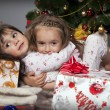 Two girls with a gift under the Christmas tree — Stock Photo #14232701