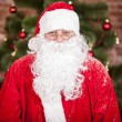 Stock Photo: Good SantClaus
