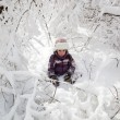 Wonderful child in the snowy woods — Stock Photo #46732727