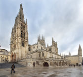 Cathedral of Santa Maria, Burgos, Castilla, Spain. — Stock Photo