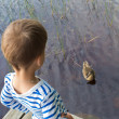 Boy and duck — Stock Photo