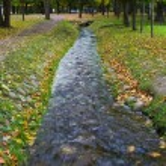 Type of autumn park — Stock Photo #13472646