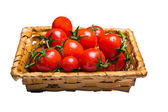 Basket of tomatoes — Stock Photo