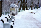 Bench in winter park — Stockfoto