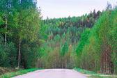 Camino rural — Foto de Stock