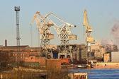 Cranes at the port — Стоковое фото