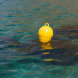 Bright buoy — Stock Photo #47952589