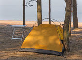 Camp in the woods — Stock Photo