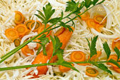 Cabbage carrots and celery — Stock Photo