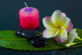 Spa stones and frangipani flowers. — Stock Photo