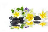 Spa stones and frangipani yellow — Stock Photo