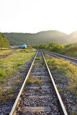 Old railway track in the forest — Stock Photo