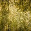 Grunge texture cement background — Stock Photo #34467933