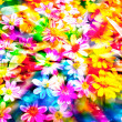 Colorful flower. — Stock Photo