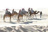 Tourists rideing camels, Sahara — Stock Photo