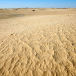 Stock Photo: Dunes of Sahara