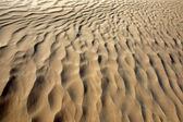 Sahara desert in Tunisia — Stock Photo