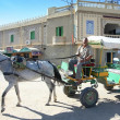 Tunisian carriage — Stock Photo