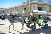 Tunisian carriage — Stock Photo