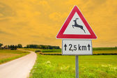 Traffic sign for deer in nature — Stock Photo