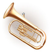 Classical Baritone horn / Euphonium tuba — Stock Vector