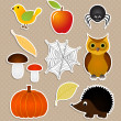 Autumn nature stickers set — Stock Vector