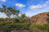 Landscape of Nitmiluk National Park — Stock Photo