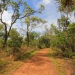 The path through Kakadu National Park — Stock Photo