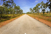 Arid, aussie, australia, australian, beauty, big, blue, bush, cl — Stock Photo