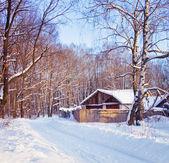 Vánoční ráno — Stock fotografie