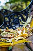 Las hojas de otoño amarillo en el banquillo — Foto de Stock