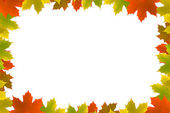 Autumn maple leafs background — Stock Photo