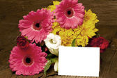 Writable greeting card with colorful flowers — Stock Photo