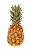 One whole pineapple fruit — Stock Photo