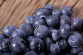 Close up Blueberries — Stock Photo