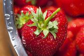 Macro shot of a fresh strawberry — Stock Photo