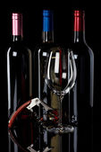 Three wine bottles and corkscrew — Stock Photo