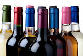 Selection wines — Stock Photo