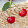 Two freshly picked cherries — Stock Photo