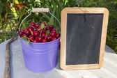 Cherries and a blank Slate Board — Stock Photo