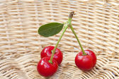 Three Cherries in a Basket — Stock Photo