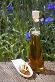 Nasiona maku i oleju — Zdjęcie stockowe