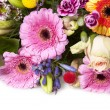 Stock Photo: Colorful bouquet of flowers