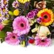 Stock Photo: Colorful Flowers Greetings